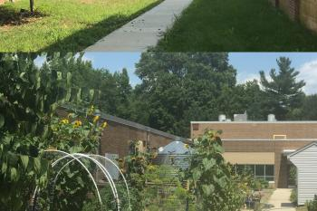 Before and After of the Learning Production Garden at Hollin Meadows Elementary School