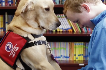 Assistance Dog Institute Video