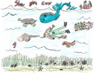 "Drawing of scuba diver and sea life with text ""Show You Care"""